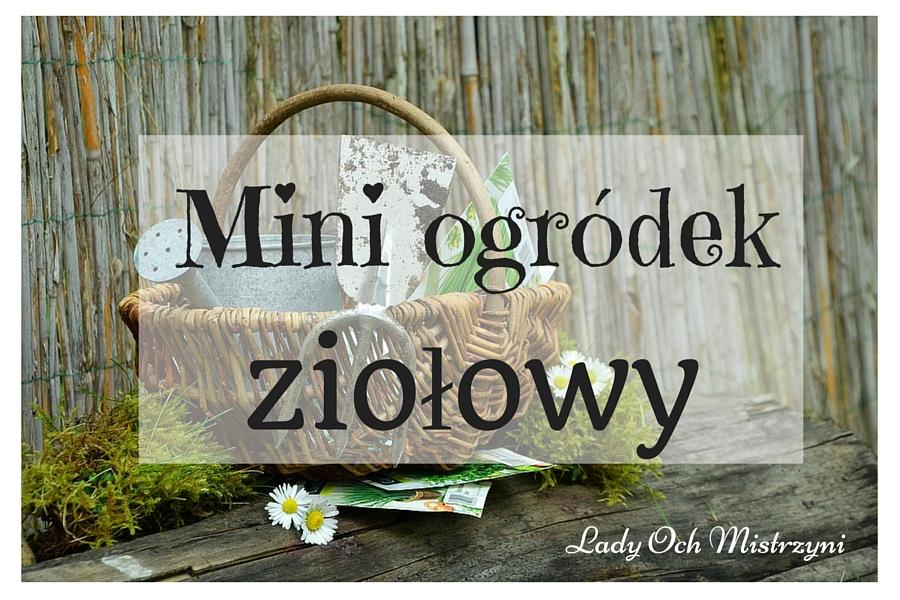 Mini ogródek – zioła