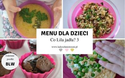 Jadłospis dla dziecka – co Lila jadła w środę? 3