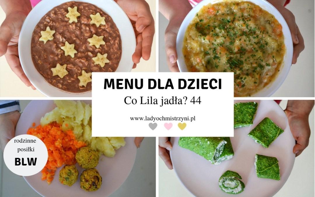 Smaczne przepisy dla dzieci BLW – co Lila jadła? 44