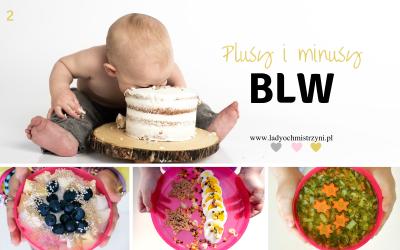 Plusy i minusy BLW – to musisz wiedzieć