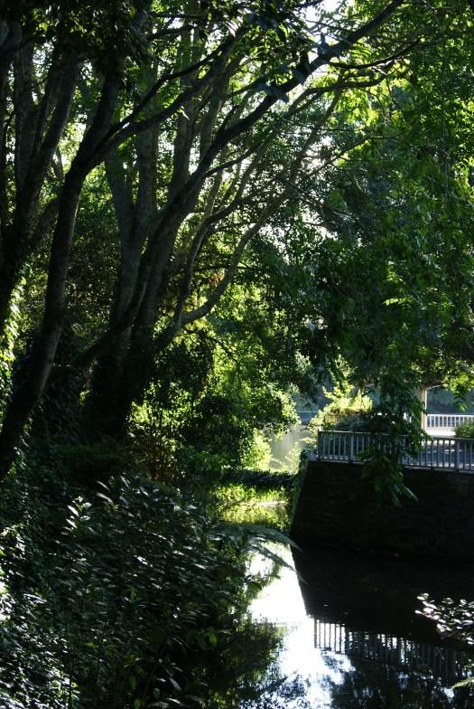 Terrace at the lake
