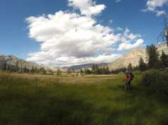 Rockhouse Meadow