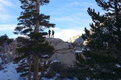 Side trip up a rock - North Fork Big PIne Creek Trail