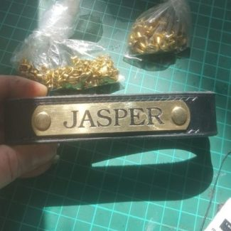 Engraved Nameplate for Jasper