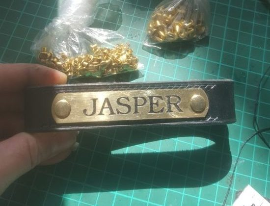 A Bespoke Headcollar For Jasper