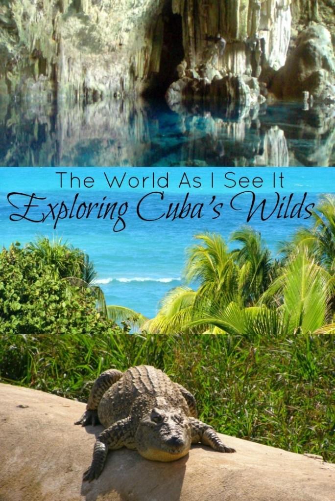 Exploring Cuba's Wilds