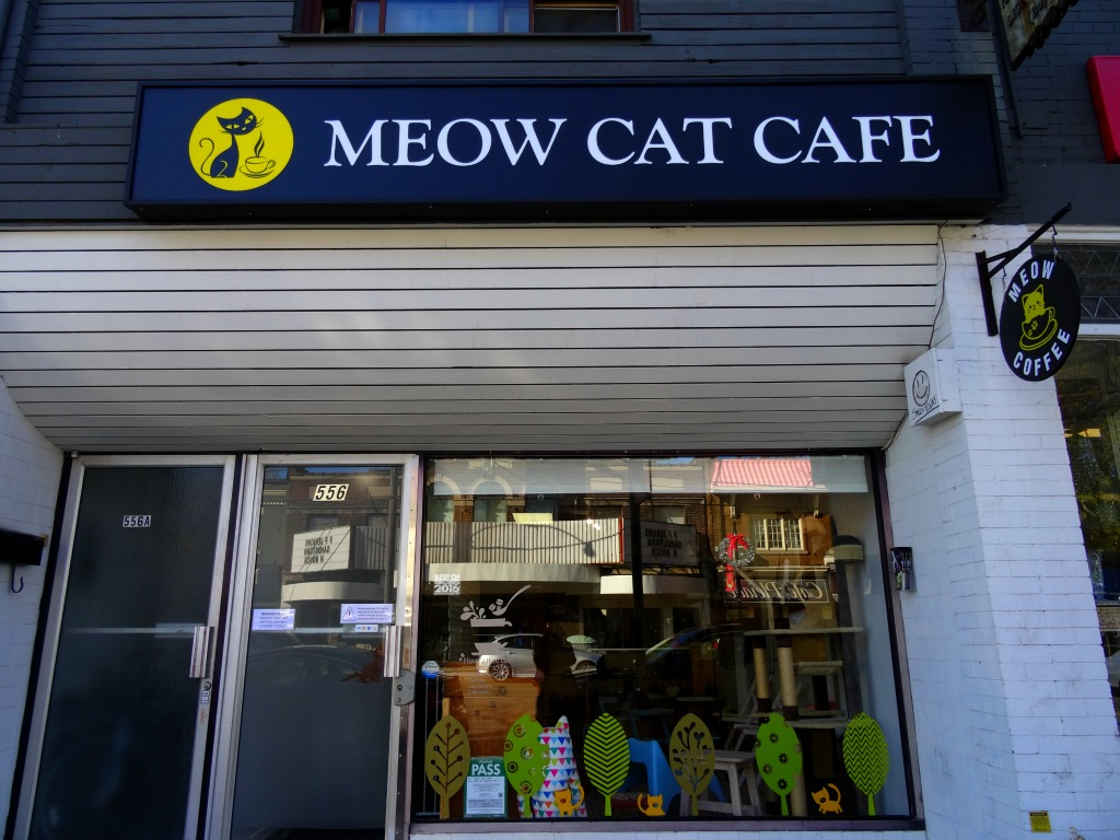Meow Cat Cafe