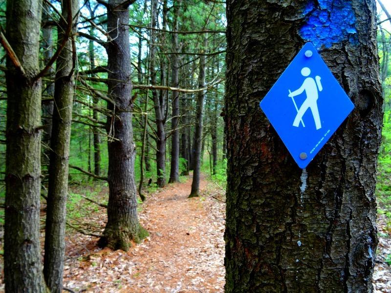 Gananoque trails