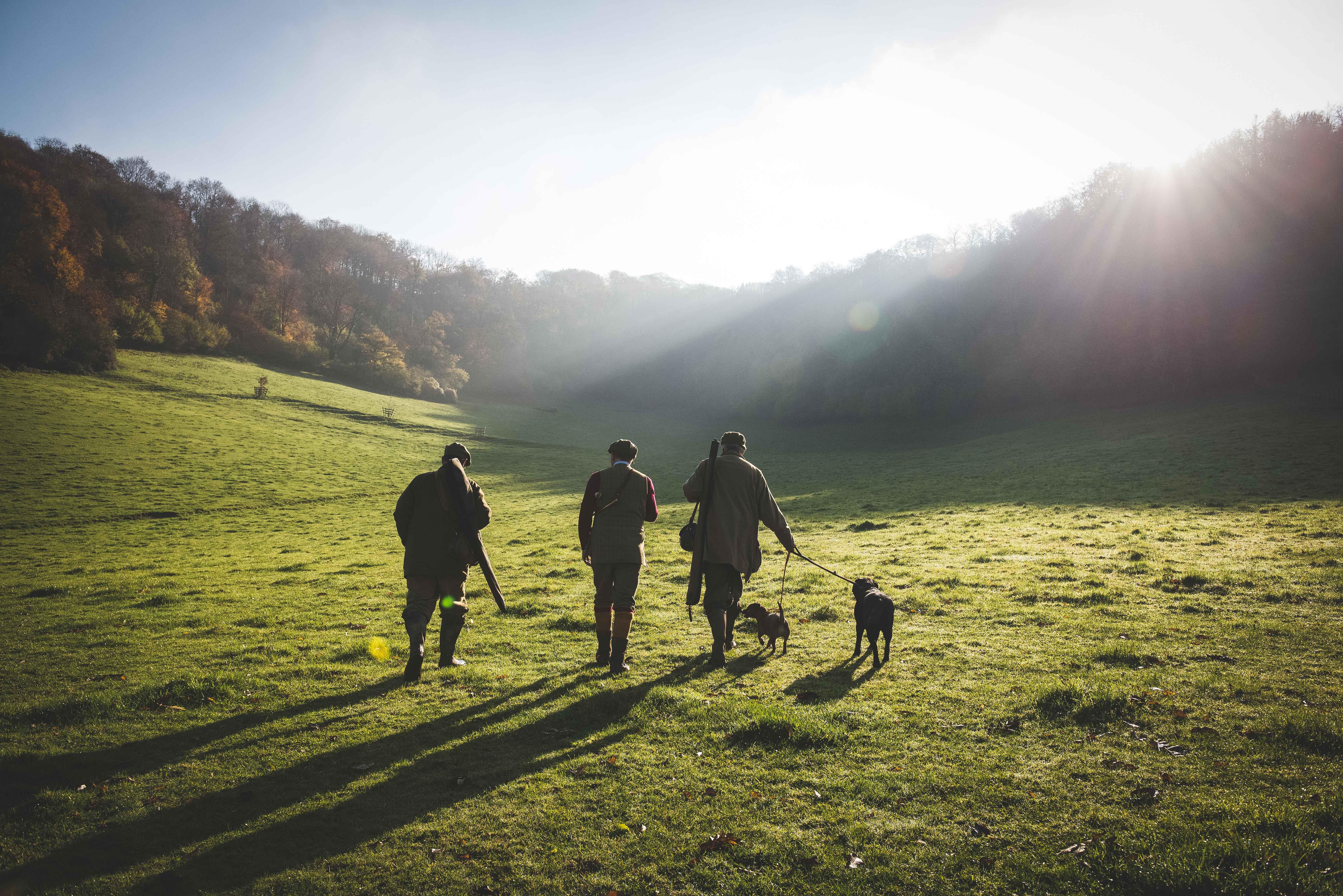 Three guns walk across a field between game shooting drives