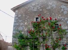 House in Pliskovica.