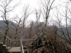 Poienari castle hidden by trees