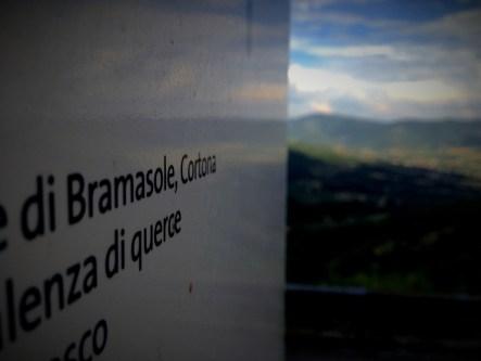 On the way to Villa Bramasole