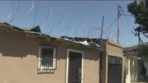 Video: Tijuanenses se roban el alambre de púas que el gobierno de Trump colocó para blindar la frontera