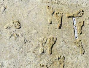 Hallan 60 huellas fósiles de hace más de 21 mil años en el Parque Nacional White Sands de Nuevo México