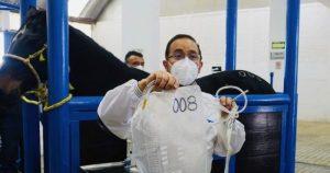 Gracias a Máximo y Cayetano, México tiene ya los primeros sueros contra el SARS-CoV-2