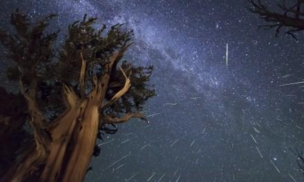 Así fue la lluvia de estrellas