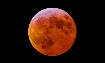 Observa en vivo el eclipse de la luna roja