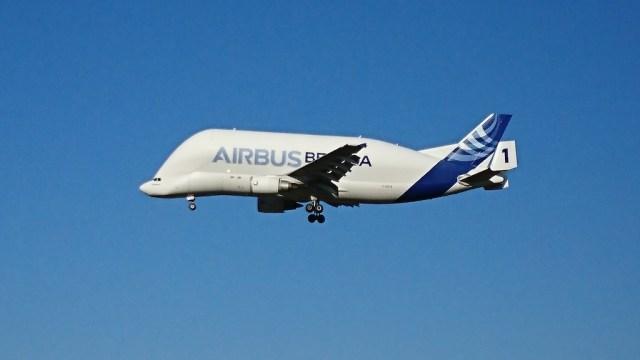 Beluga_A300-600ST_vol