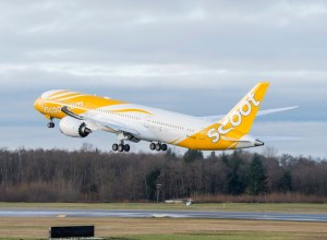 Boeing_787-8_Scoot
