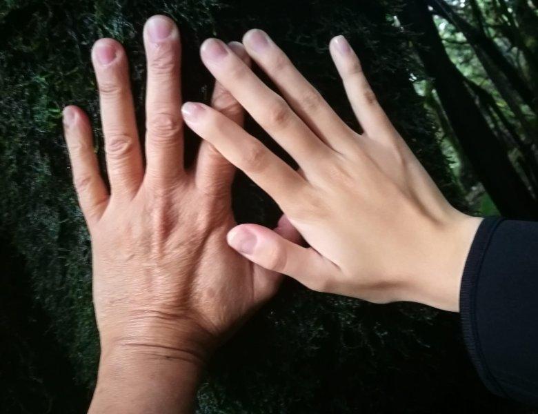 Conectar con la naturaleza