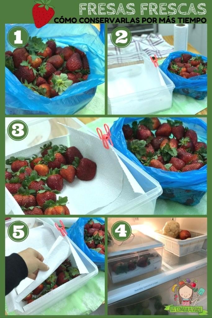 Cómo conservar fresas frescas por más tiempo