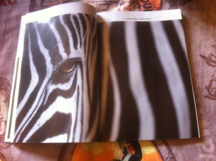 double page dans image et nature 2014