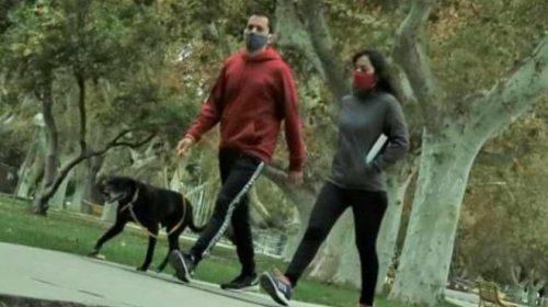 Vuelven las caminatas saludables: horarios y normativas a cumplir