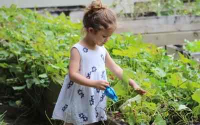 Comment initier mon enfant au jardinage ?