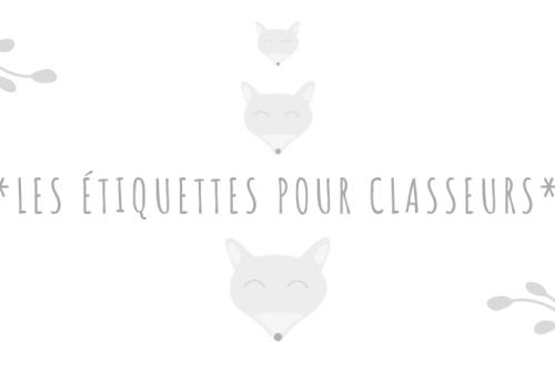 Etiquettes-classeurs-présentation