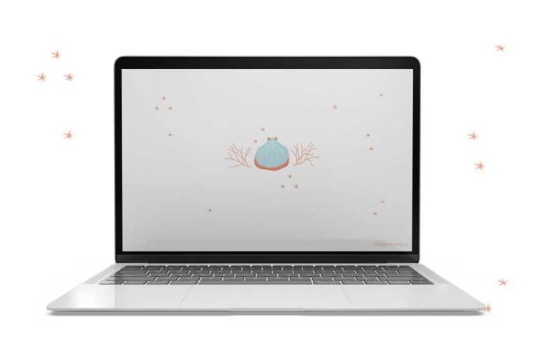 Fond d'écran-coquillage-ordinateur