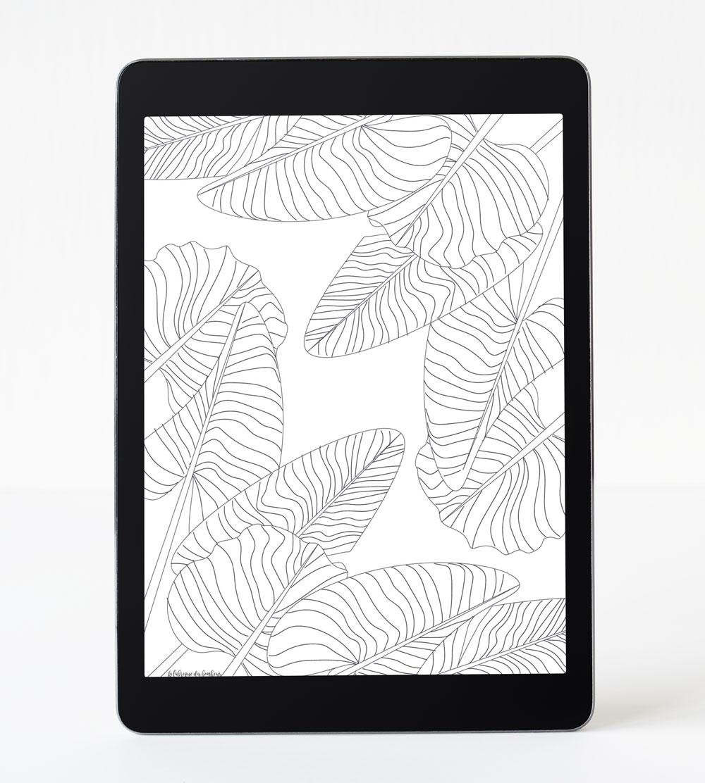 fond-decran-noir-et-blanc-tablette