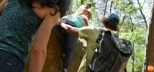 patagonia-pantalon-escalade-grimpe-hampi