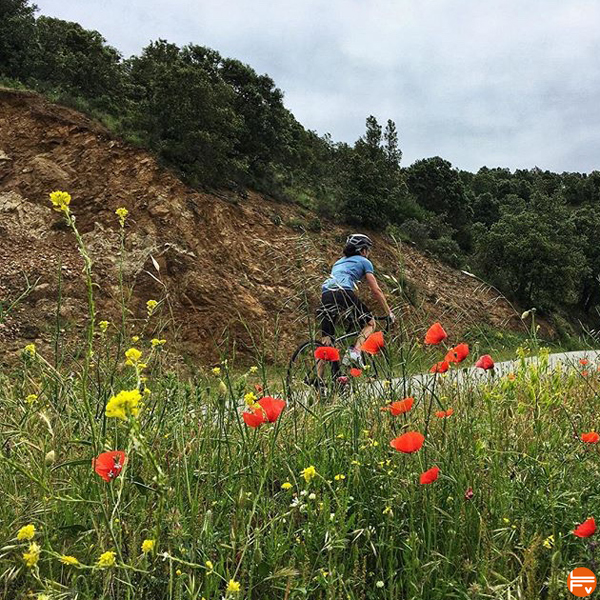 velo-grimpeur-entrainement-progressser-cote-ppg-coaching-fractionné-escalade-montagne