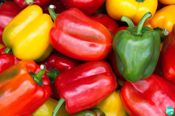 bell-peppers-assorted- alex honnold favorite go to snack climbing