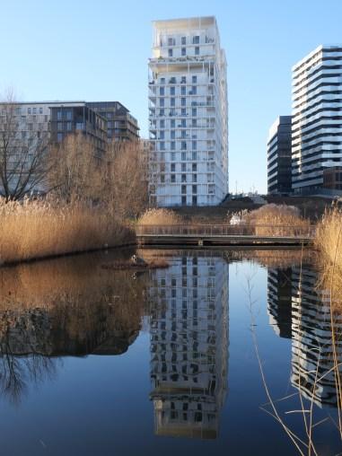 Au pied d'un miroir d'eau (AAVP & Aires Mateus)