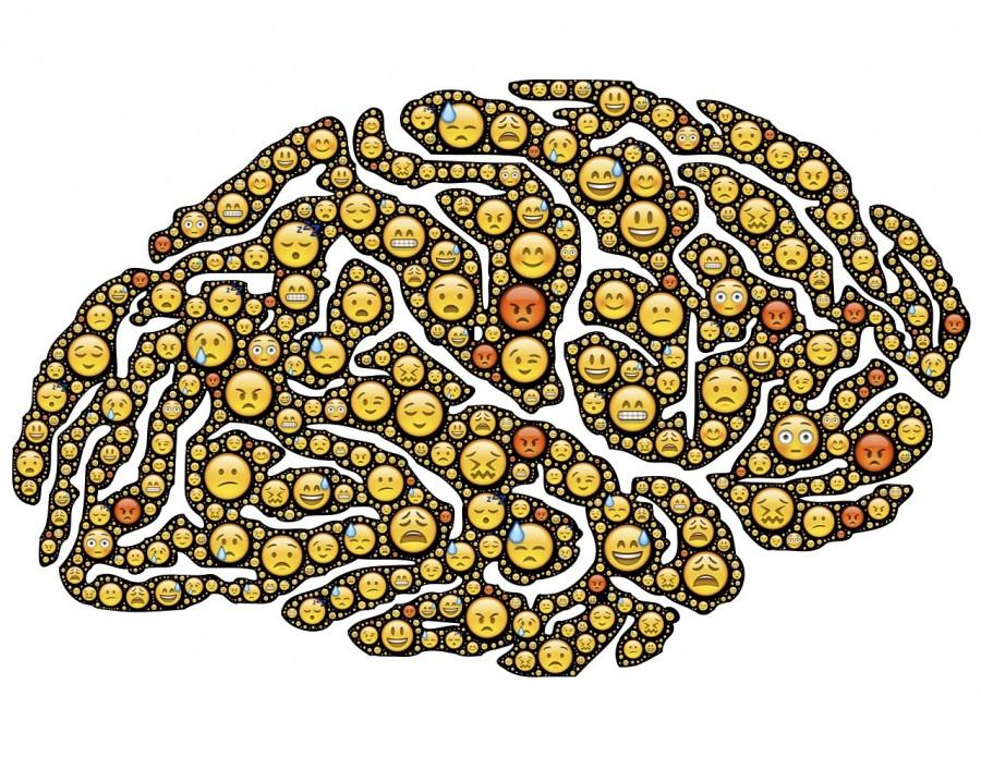 Cerveau centre des émotions