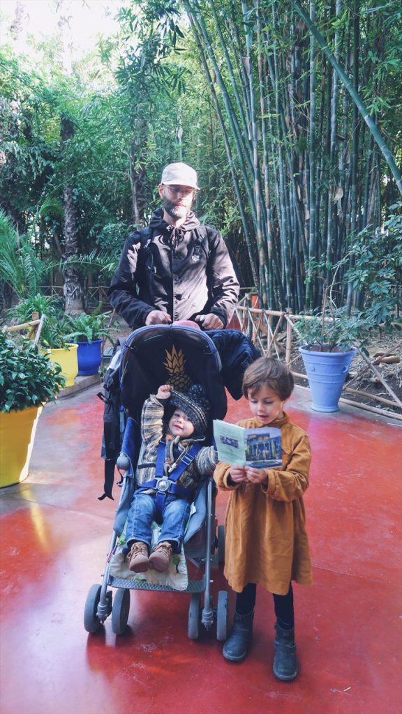 Voyage au Maroc jardin majorelle visite