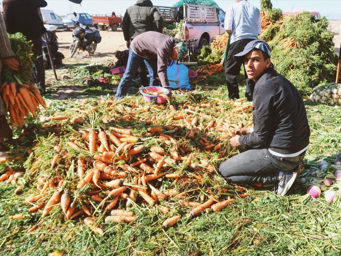 Voyage au Maroc Taroudant grand marché étalage des carottes