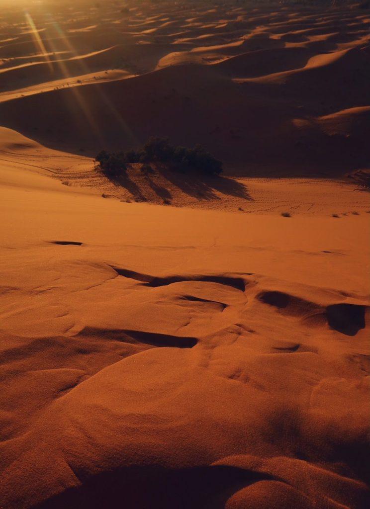 Voyage au Maroc désert de Sahara Merzouga les dunes oranges