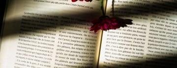 Comment prendre le temps de se remettre à lire ?