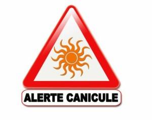 Déclenchement du niveau orange « alerte canicule »