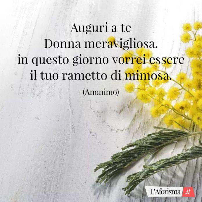 Auguri a te Donna meravigliosa, in questo giorno vorrei essere il tuo rametto di mimosa. (Anonimo)