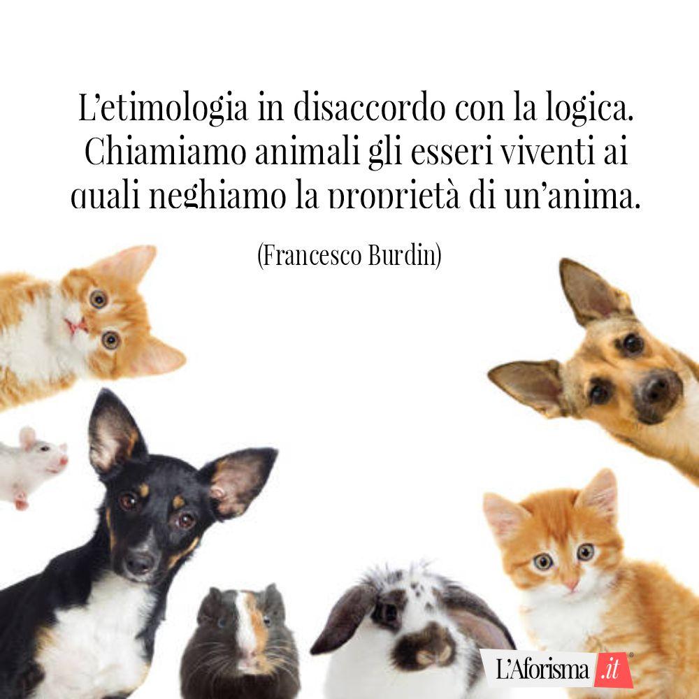 L'etimologia in disaccordo con la logica. Chiamiamo animali gli esseri viventi ai quali neghiamo la proprietà di un'anima. (Francesco Burdin)