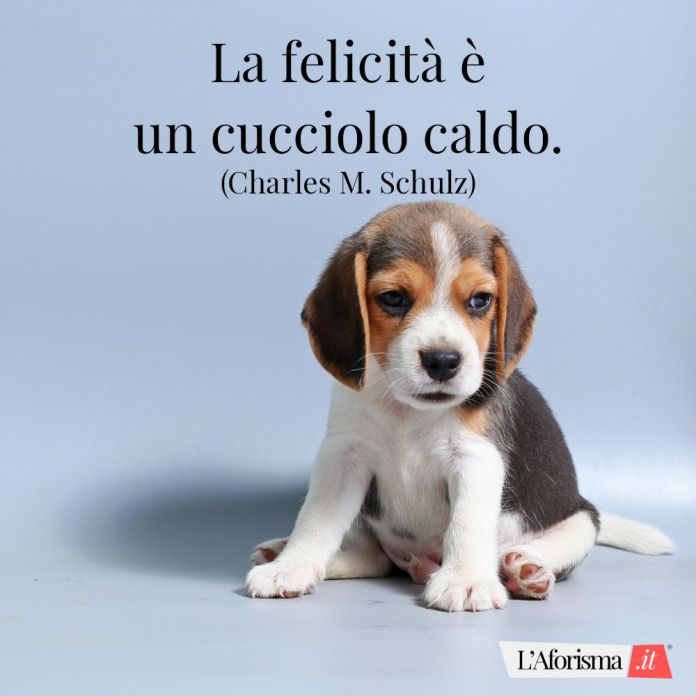 La felicità è un cucciolo caldo. (Charles M. Schulz)