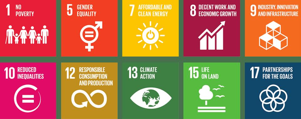 Objectifs de Développement Durable de l'ONU pour Moringa