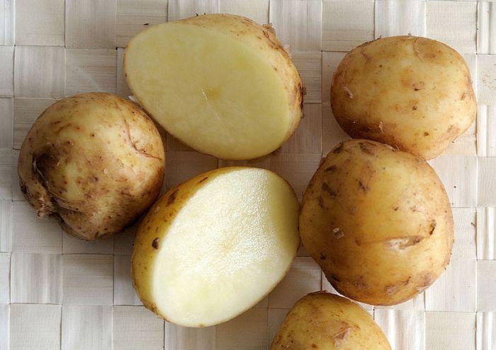 File:Pomme de terre variété bonnotte.JPG