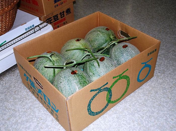 File:Yubari melons in the cardboard box.JPG