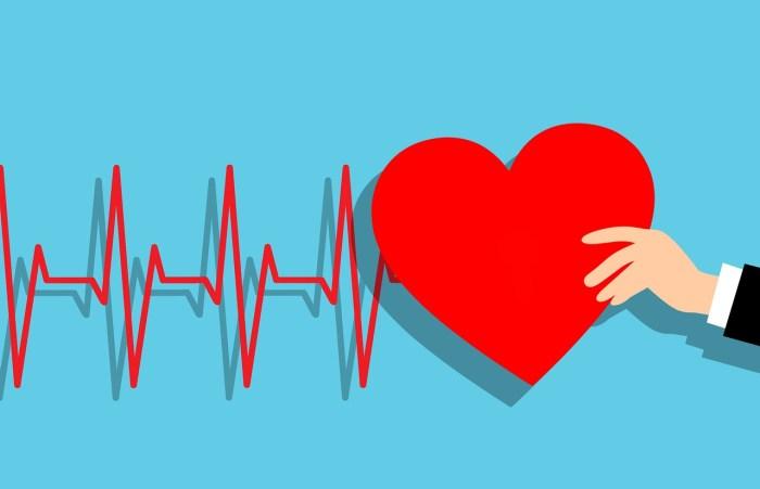 C:\Users\Zubair\Downloads\heartbeat-4263129_1280.jpg