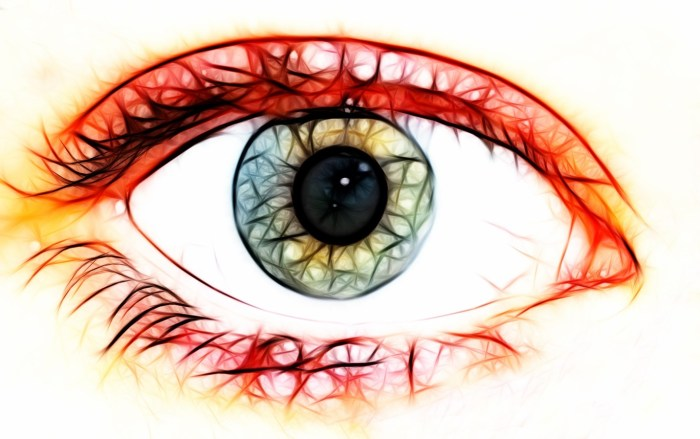 C:\Users\Zubair\Downloads\eye-1010677_1920.jpg