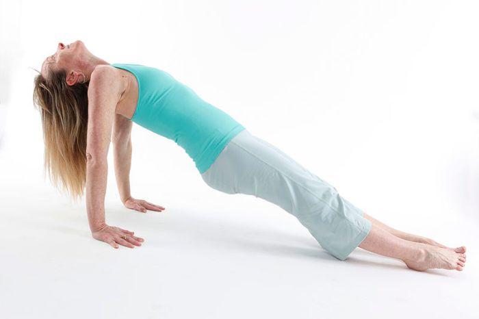 File:Putvottanasana - Upward Plank Pose 1 - Diagonal View.jpg